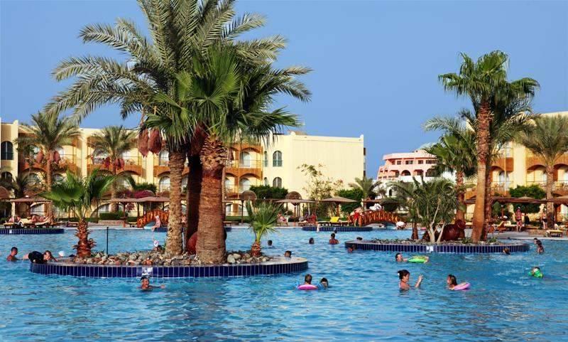 отель desert rose resort в хургаде