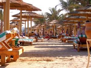 Пляж в отеле  Альбатрос палас