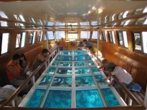 Прогулка на лодке с прозрачным дном
