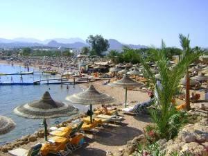 Лето в Египте