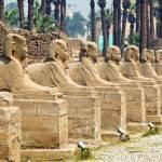 Сохранение египетских памятников