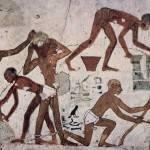 Рабочие фараона
