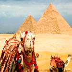 Возможность ценового маневра в Египте