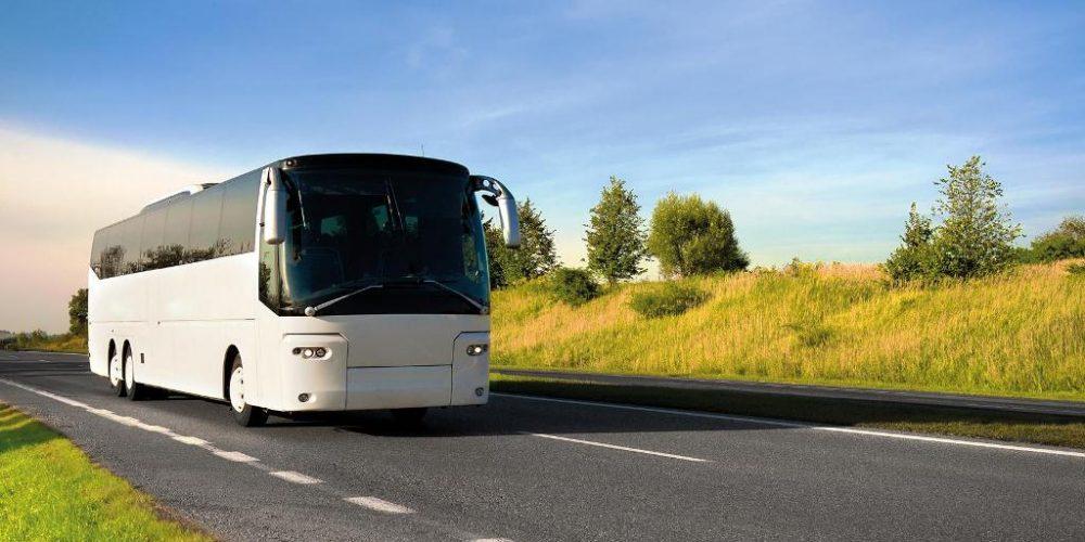 Автобусные туры от «Вокруг света»