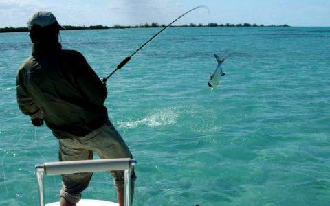 Рыбалка на яхте в Египте