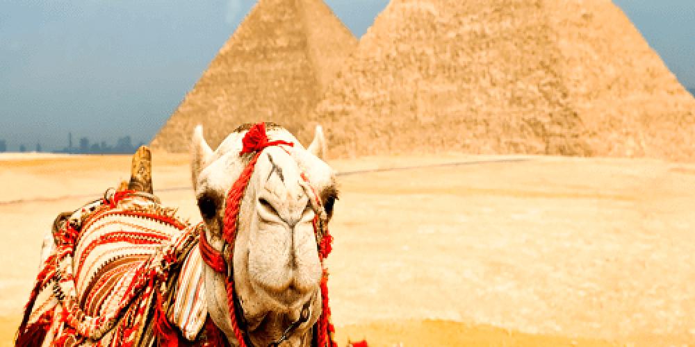 Отдых в Египте — некоторые аспекты